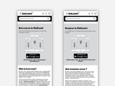 Image of the wireframe of the landingspage for Walloon customers.